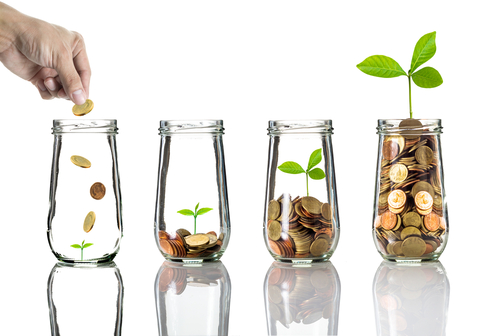 Photo of someone putting coins in a jar and a plant growing from it